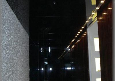 Paroi de couloir plaqué en ébène de Macassar, verni brillant